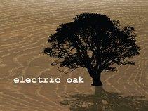 Electric Oak