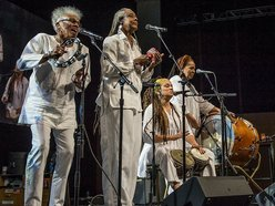 Gaye Adegbalola & the Wild Rutz - A Cappella Blues