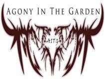 AITG/Agony In The Garden