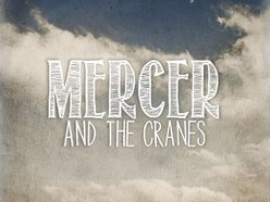 Image for Mercer and the Cranes