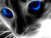 Death Kitty Disco