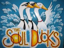 The Soul Ducks