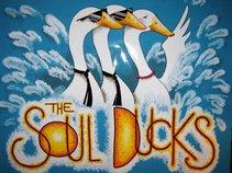 The Soul Ducks