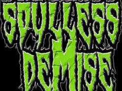 Image for Soulless Demise