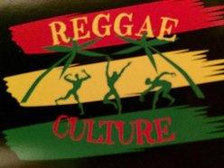 Image for Reggae Culture