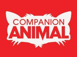 Image for Companion Animal