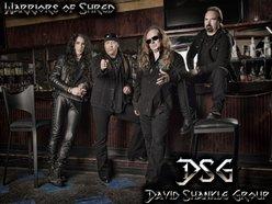 Image for DSG/David Shankle Group