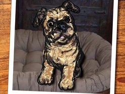 Image for Sundog