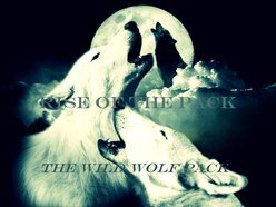 Image for The Wild Wolf Pack