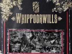 Image for The Whippoorwills