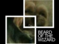 Image for Beard of the Wizard