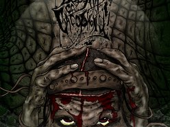 Image for Bedlam of Cacophony
