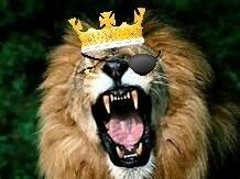 Swoop Lion