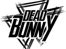 deadbunny