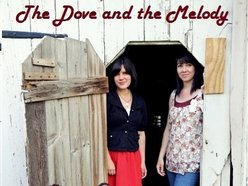 Image for The Dove and the Melody