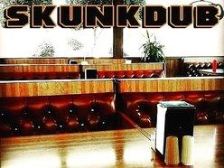 Image for Skunkdub