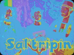 Image for sal'tripin