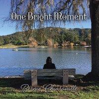 Onebrightmoment 1100