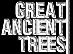 Image for Great Ancient Trees