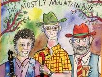 Mostly Mountain Boys