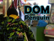 Dom the Penguin