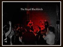 The Royal Blackbirds