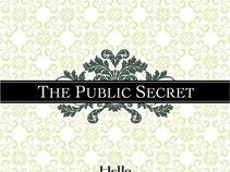 The Public Secret