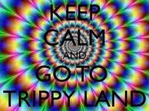TrippyLandSloMo