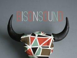 Image for BisonSound