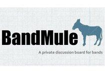 Band Mule