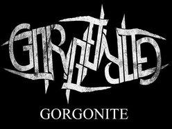 Image for Gorgonite