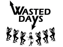 Image for Wasted Days