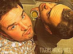 Image for Tigers Broke Free