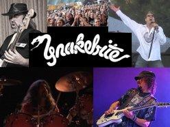 Image for Snakebite Tribute