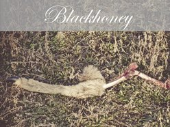Image for Blackhoney