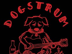 Image for Dogstrum