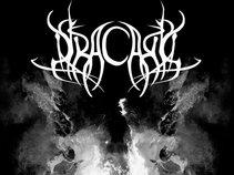 Dracaris