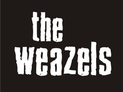 The Weazels