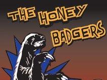 Honey Badgers Band