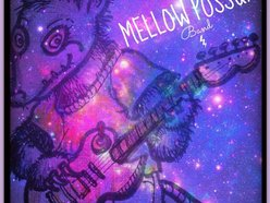 Image for Mellow Possum Band