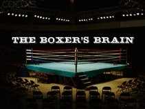 The Boxer's Brain