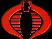 Cobra - Organization