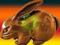 うさぎラビット(Usagi Rabbit)