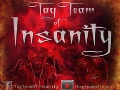 Image for Tag-Team of Insanity