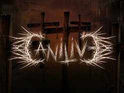 Image for Canilive