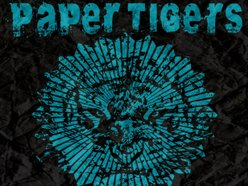 Image for Paper Tigers