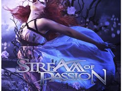 Image for Stream of Passion