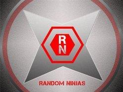 Image for Random Ninjas