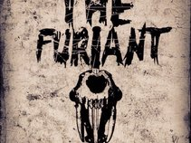 The Furiant