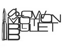 Slow Motion Bullet